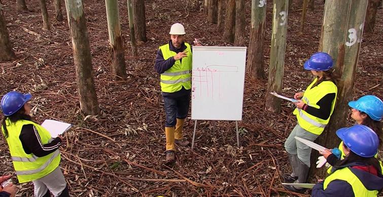 Polo Tecnológico de Tacuarembó implementa propuesta de estudio y trabajo en el área forestal