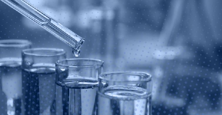 Desarrollo de proyectos educativos en ciencias de la vida