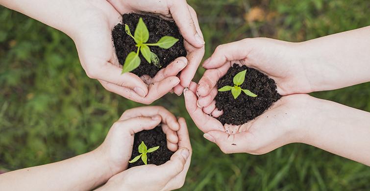 Aprendizaje y servicio solidario fortalece relación entre comunidad educativa y sociedad