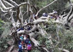 Campamento Educativo de Laguna Negra (Rocha)